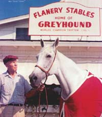 Greyhound and Dudley Putnam